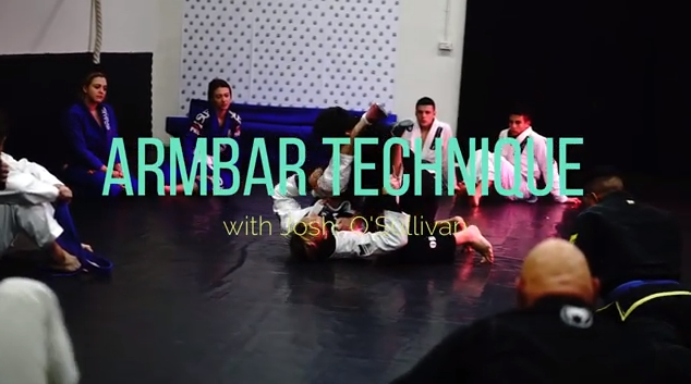 armbar 1 Armbar Technique