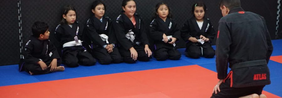 c16130 49393e975b764d4ab24084dfc3167649 mv2 d 6000 4000 s 4 2 1024x683 1 Why Grappling is beneficial for students - a teachers perspective