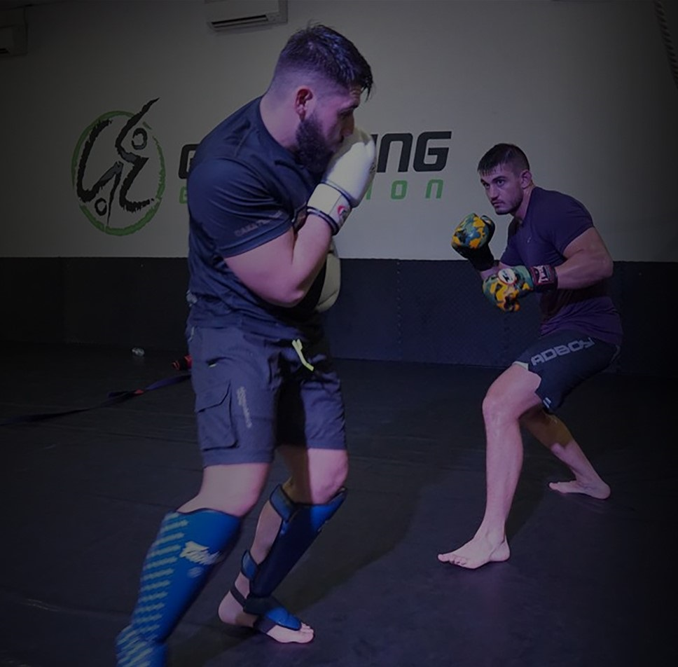 mmareactive MMA